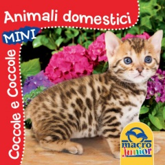 Animali Domestici  Autori Vari   Macro Junior