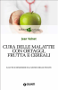 Cura delle malattie con ortaggi, frutta e cereali (ebook)  Jean Valnet   Giunti Editore
