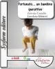 Fortunato... un bambino iperattivo (ebook)  Esterina Castaldo Lorena Schettini  Sysform Editore