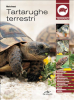 Tartarughe terrestri (ebook)  Marta Avanzi   De Vecchi Editore
