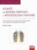 Atlante del sistema nervoso in reflessologia plantare  Orlando Volpe   Red Edizioni