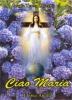 Ciao Maria  Maria Teresa Crovetto   Editrice Ancilla