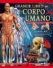 Grande libro del corpo umano  Autori Vari   IdeaLibri