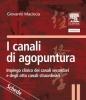 I canali di agopuntura - schede  Giovanni Maciocia   Edra