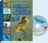 Nel mondo elusivo degli uccelli  Autori Vari   Erga Edizioni