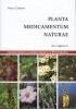 Planta Medicamentum Naturae  Rocco Carbone   Dibuono Editore