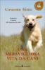 Una meravigliosa vita da cani  Graeme Sims   Sperling & Kupfer