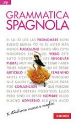Grammatica spagnola  Elena Accorsi   Vallardi Editore