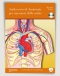 Audiocorso di Anatomia per operatori della salute (CD)  Riccardo Forlani   Edizioni Enea