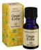 Essenza Profumata - Ginger & Lime     Victor Philippe